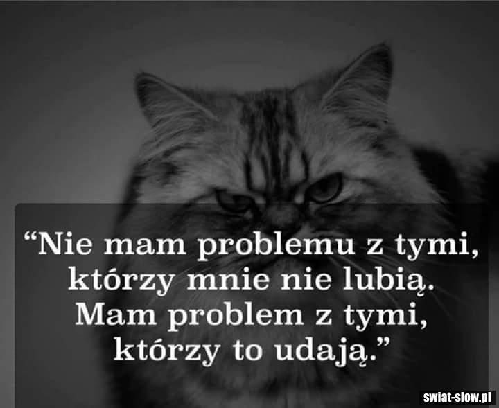 Nie mam problemu